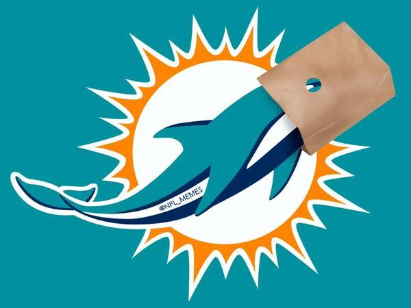 dolphins bag on head meme