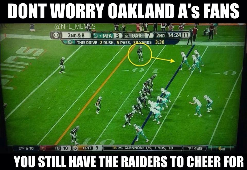 raiders-fans-sorry